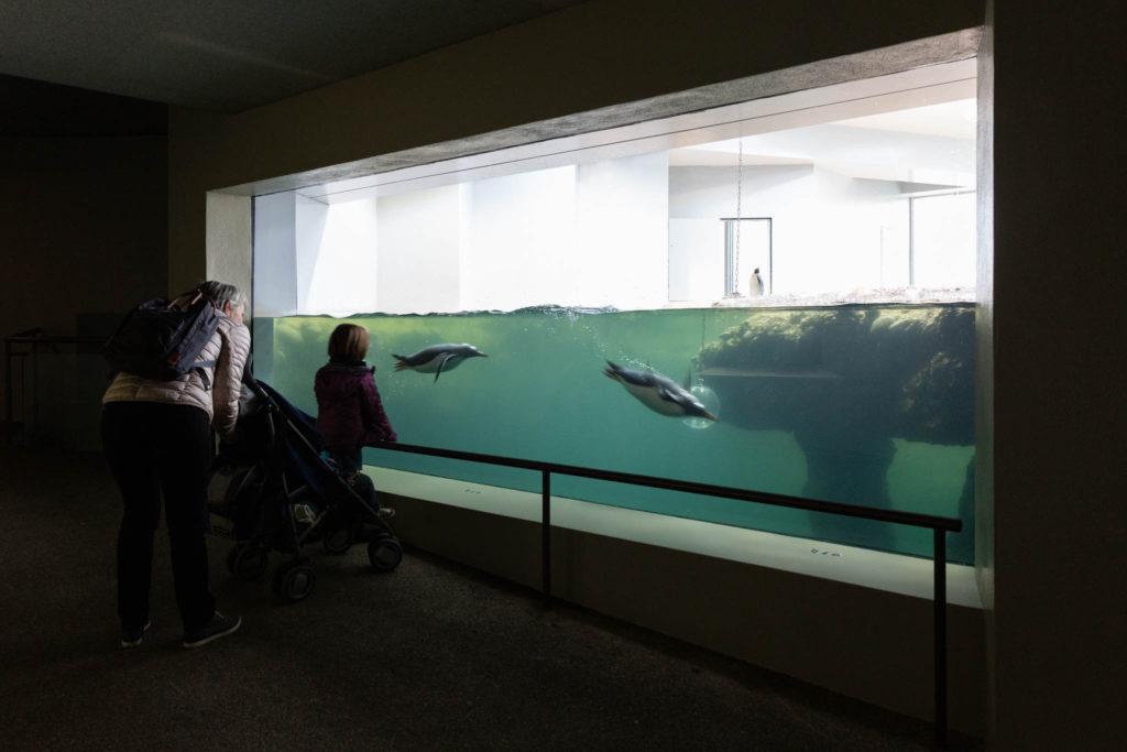 Vivarium Zoo Basel von Burckhardt+Partner © Architektur Basel