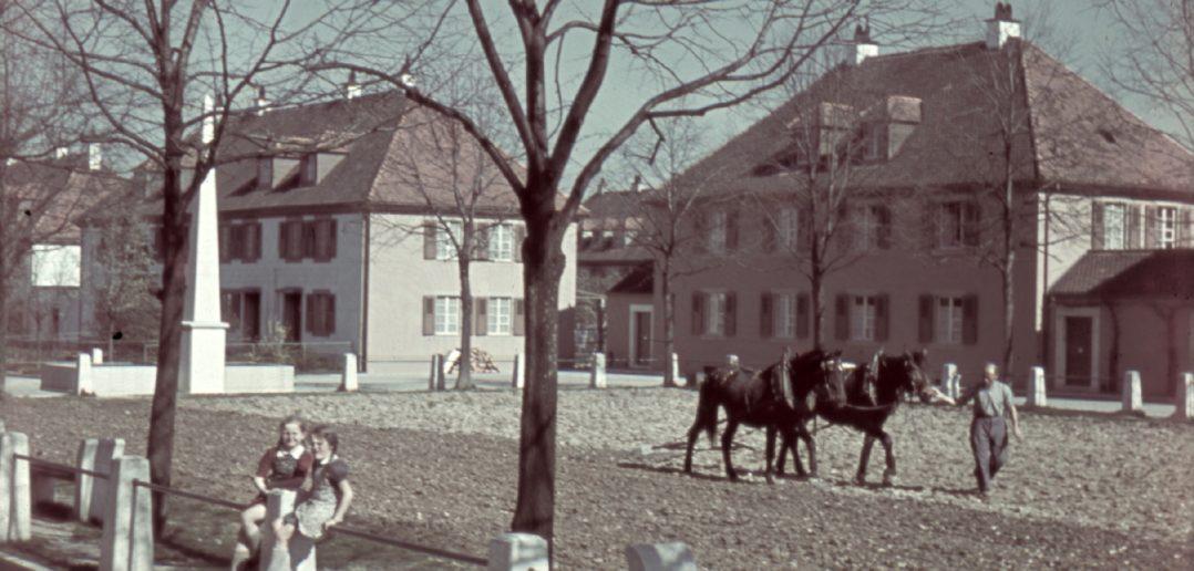 """Während dem 2. Weltkrieg: Die """"Anbauschlacht"""" machte auch vor dem Freidorf nicht halt © Archiv Siedlungsgenossenschaft Freidorf"""