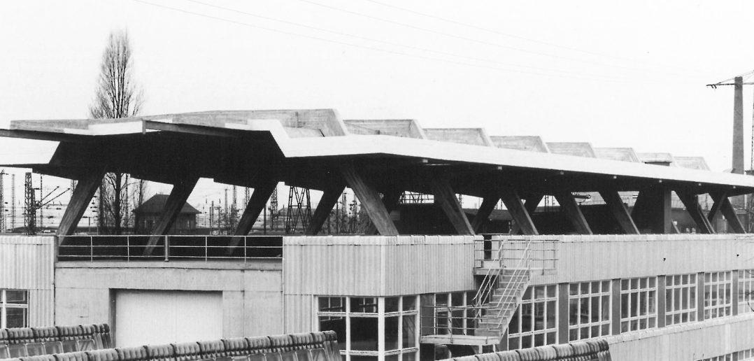 Ansicht der rippenförmig aufgereihten Zweigelenkramen der Übedachung des Holzlagers © Walter Grunder, Binningen