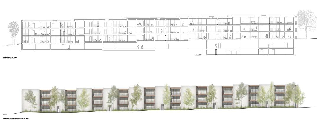 Schnitt und Fassade Wohnen Studio Basel Bruderholz © Morger Partner